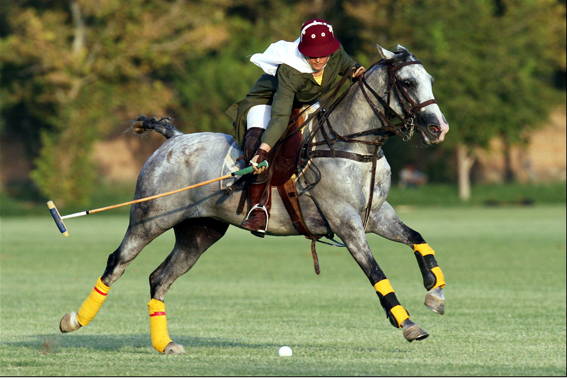 Iranian_girl_polo_player.jpg